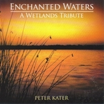 Enchanted Waters by Peter Kater