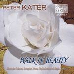Walk In Beauty by Peter Kater