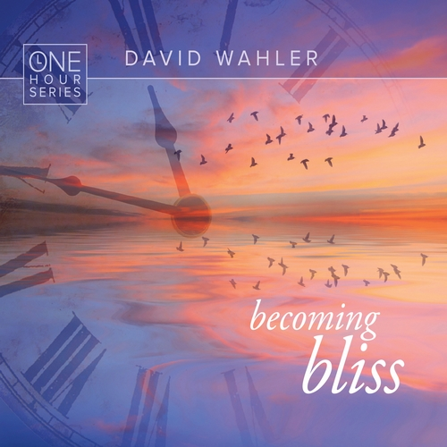 Becoming Bliss de David Wahler