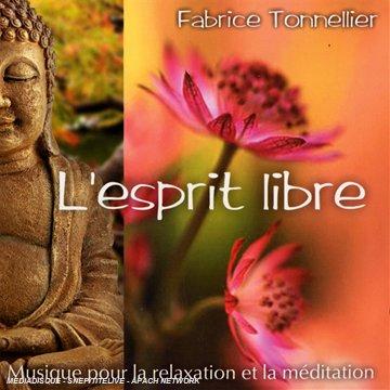L'esprit libre (2008) by Fabrice TONNELLIER