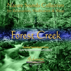 Forest Creek by Ashaneen