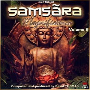 Samsãra - Magnificience - Volume 8 by David Thomas