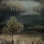 What The Years Have Left Behind - Reaching Calm