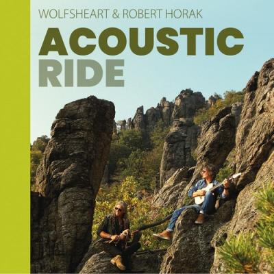 Acoustic ride cover 500