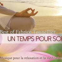 Best of 2014 ftonnellier cover 350