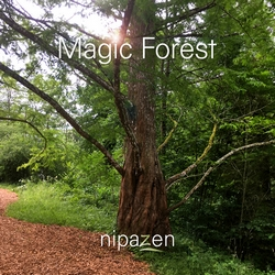 Magic Forest - Nipazen