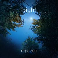 Nipazen pochette night 500