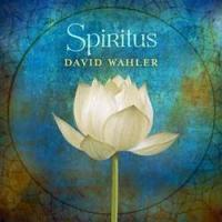 Spiritus cover 250