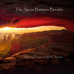 the-space-between-breaths-sherry-finzer-will-clipman