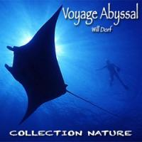 Voyage abyssal 250