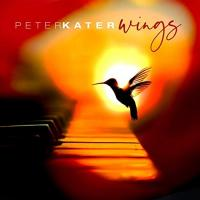 Wings peter kater cover 500